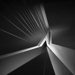 Shape Of Light III - Erasmus Bridge