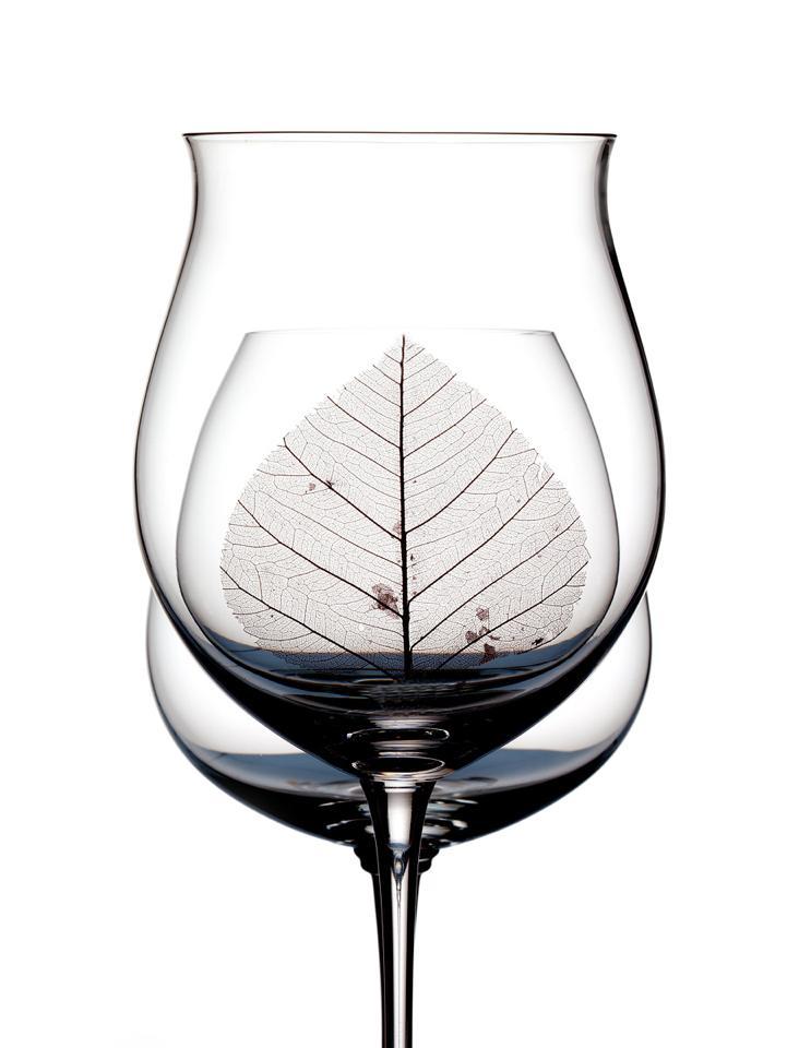 wine-glasses-and-leaf